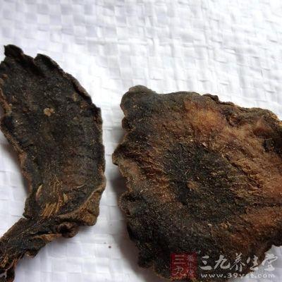 玄参可与生地、羊蹄根等同用,能消退斑疹