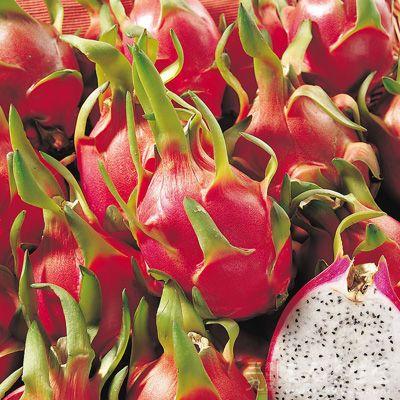 火龙果一个,银耳30克,木耳30克,雪梨一个,青豆15克,枸杞15克,冰糖适量