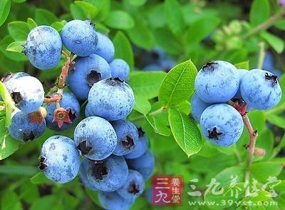 蓝莓,是一种蓝色的浆果。原产于美国