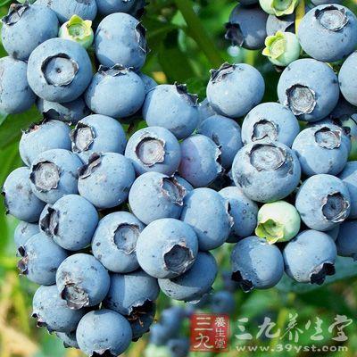 蓝莓中含有多种多酚类物质,酚酸就是其中重要的一类