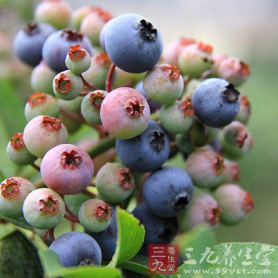 蓝莓含有大量的花青素,而花青素的功效非常丰富