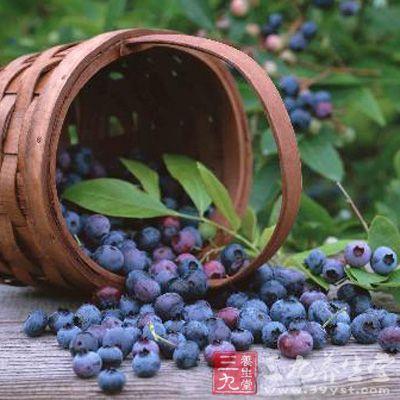 野生蓝莓清水轻轻冲洗