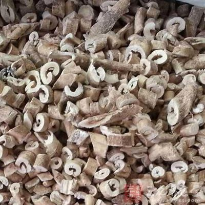 白鲜皮为芸香科多年生草本植物白鲜皮的根皮