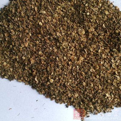 蛇床子素能使豚鼠肺灌流量增加,其作用强于氨茶碱