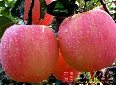 苹果能够有效地清理肠道,预防便秘