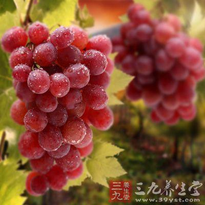 葡萄籽中的富有丰富的亚油酸,可以起到有效的降低油脂的功能