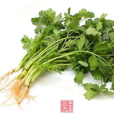 香菜是餐桌上常见的芳香开胃之品