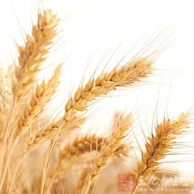将麦芽、山楂、山药洗净,放入药锅内,加清水适量,煮1小时左右