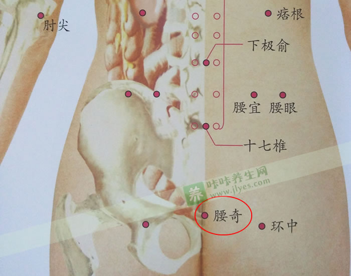 腰奇穴位准确位置图