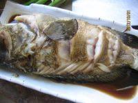 清蒸石斑鱼的做法步骤7