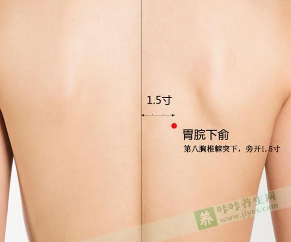胃脘下俞穴的功效与作用