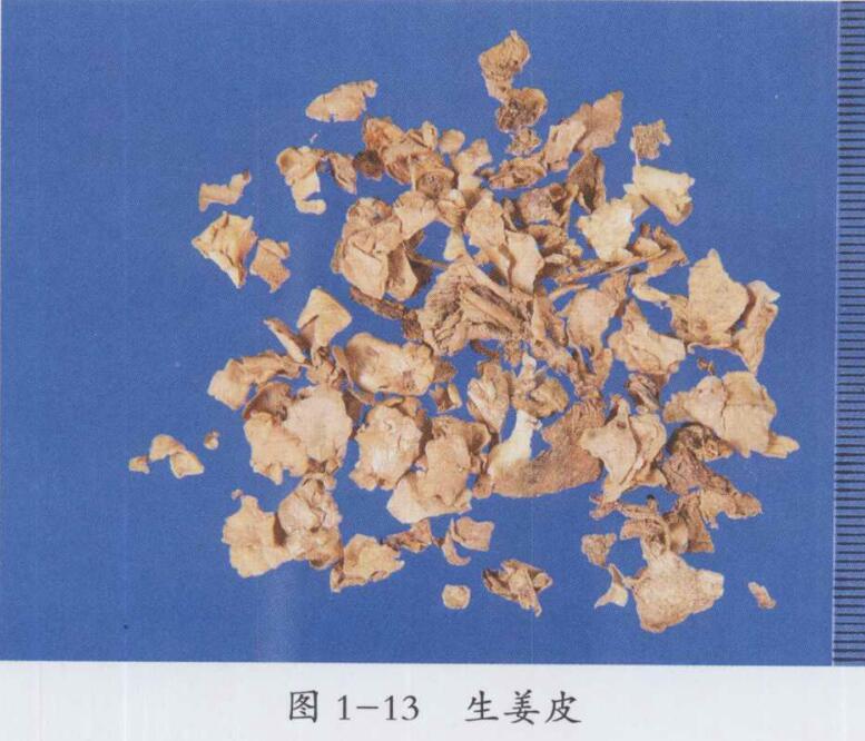 生姜皮的图片