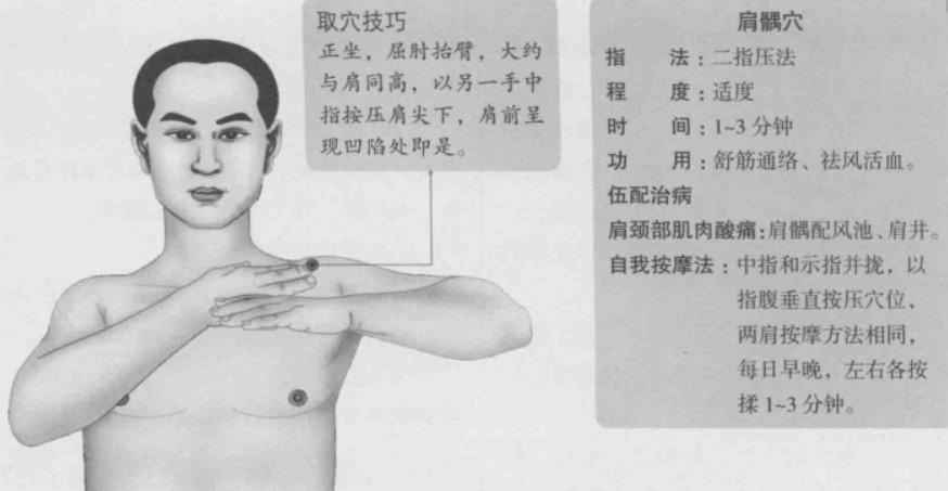 肩髃的准确位置图