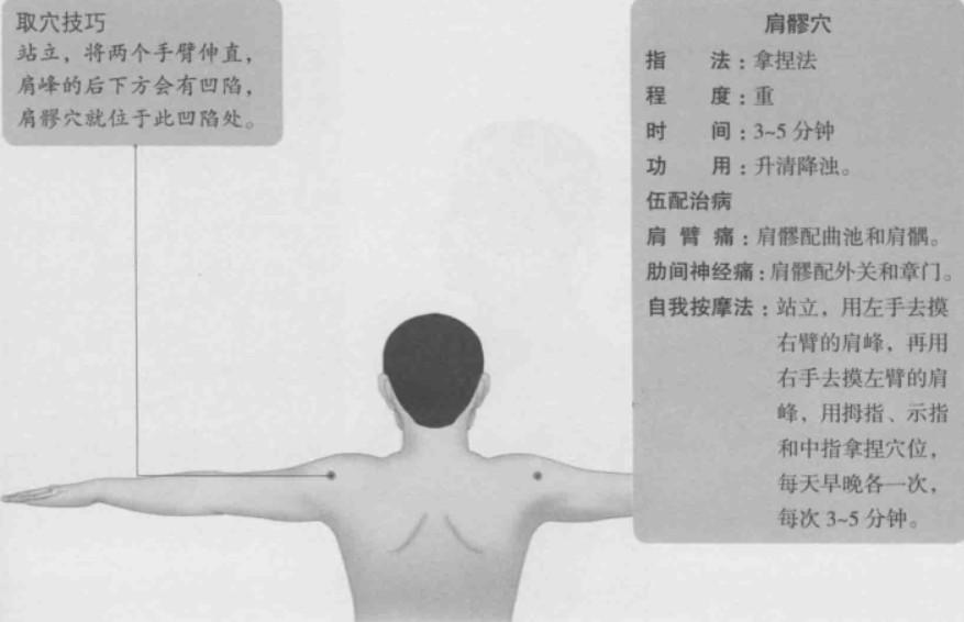 肩髎的准确位置图
