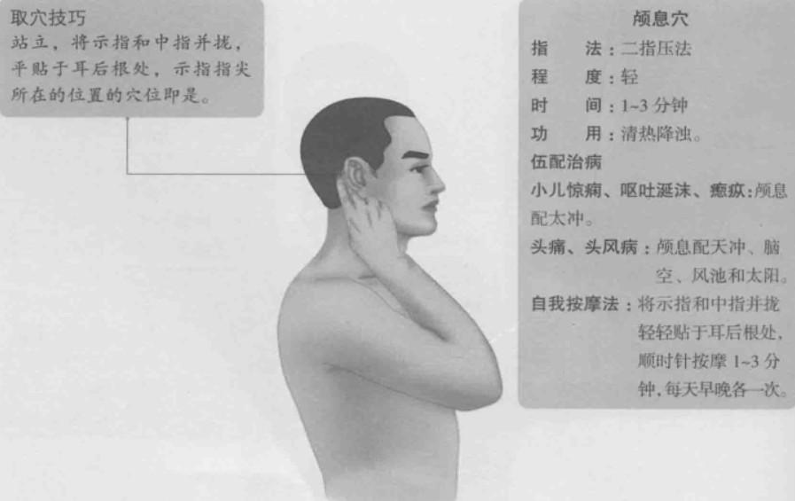 颅息的准确位置图