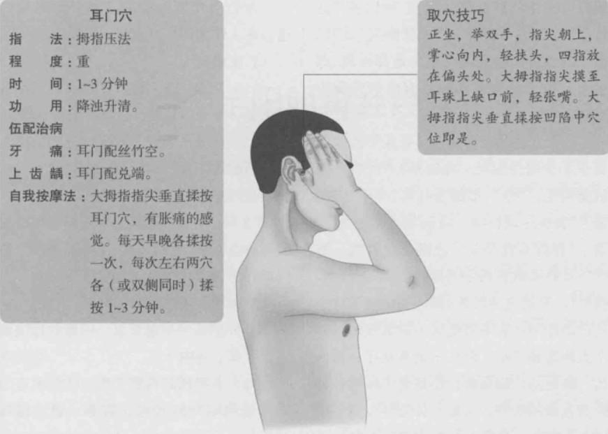 耳门的准确位置图