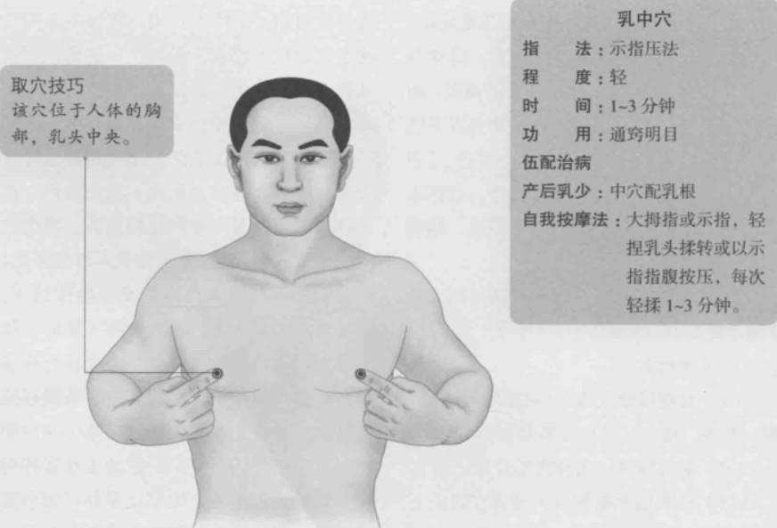 乳中的准确位置图
