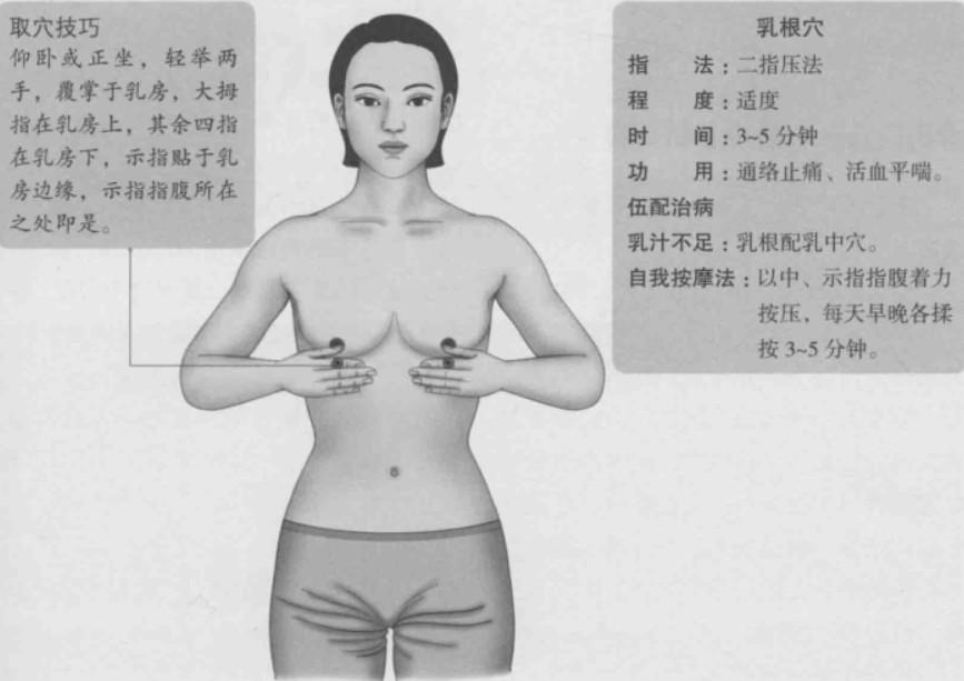 乳根的准确位置图