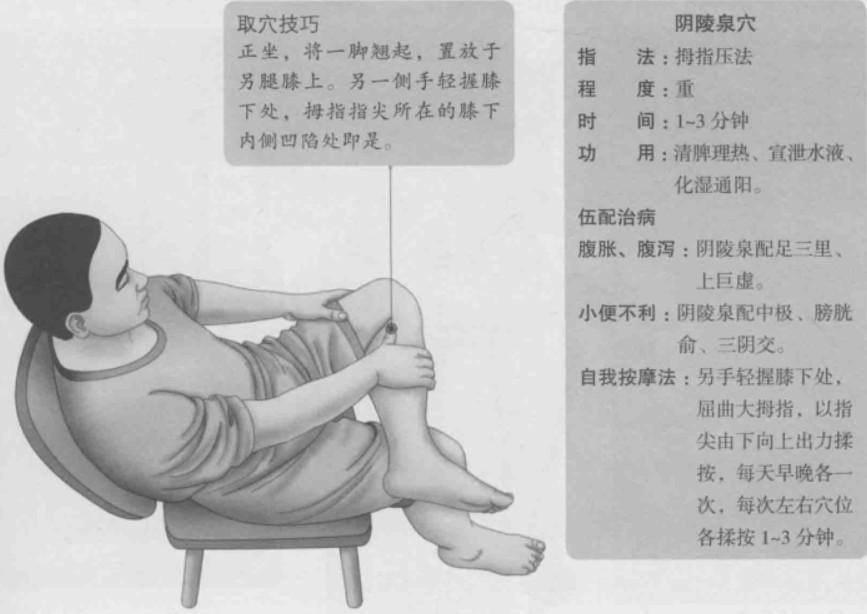 阴陵泉的准确位置图
