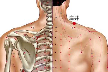肩井的准确位置图