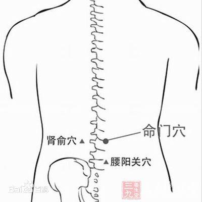 肾俞的准确位置图